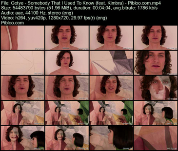 Gotye-Somebody-That-I-Used-To-Know-feat.-Kimbra-Pibloo.jpeg